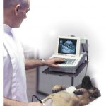 Portable Vet Scanners since 1980's